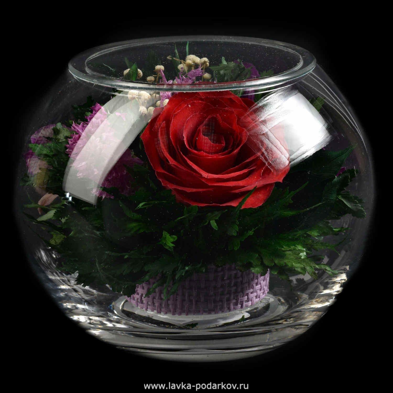 Цветы которые не вянут купить, букет невесты