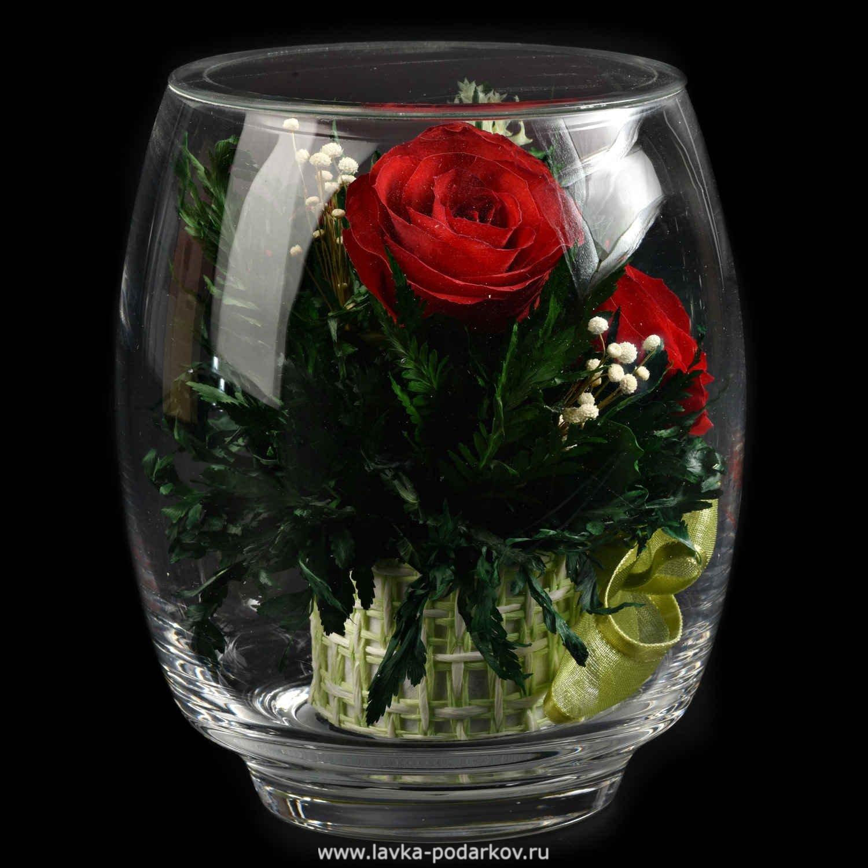 Букеты, цветы которые не вянут купить